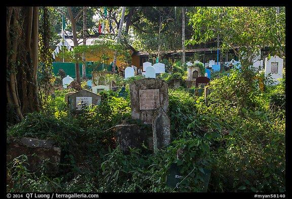 Graves and vegetation in Muslim Cemetery. Yangon, Myanmar